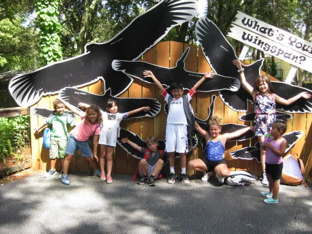 CLC Campers Having a Blast During Zoo Week!